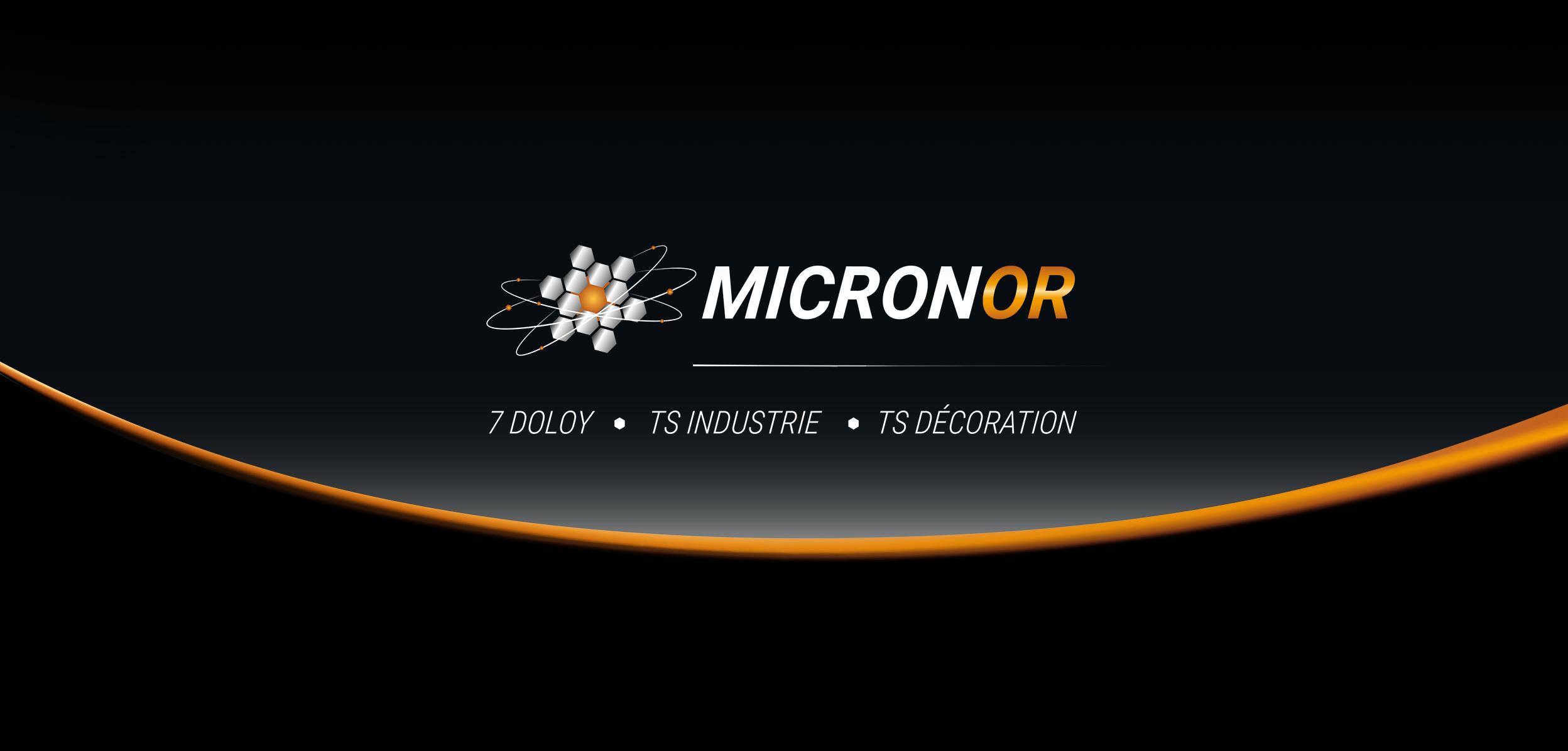 Micronor logo